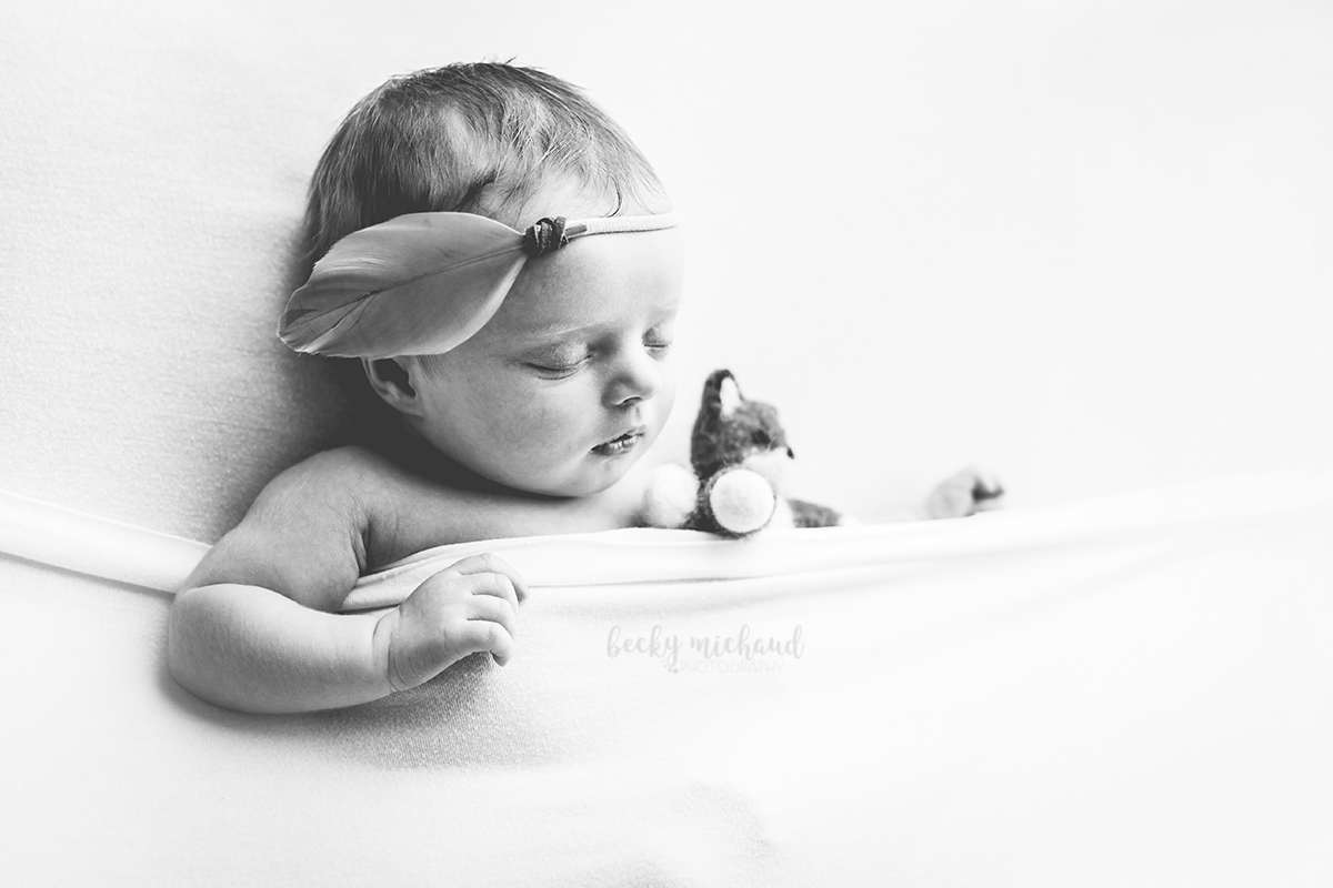 black and white portrait of a newborn baby girl taken in Milliken, Colroado