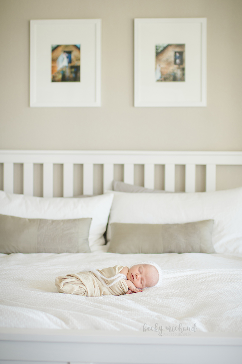 Becky Michaud Photography - Fort Collins - Newborn Photographer
