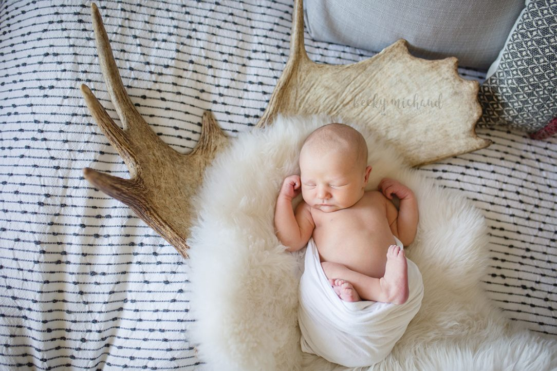 Lifestyle newborn photo taken in Fort Collins, Colorado of a baby and a moose antler