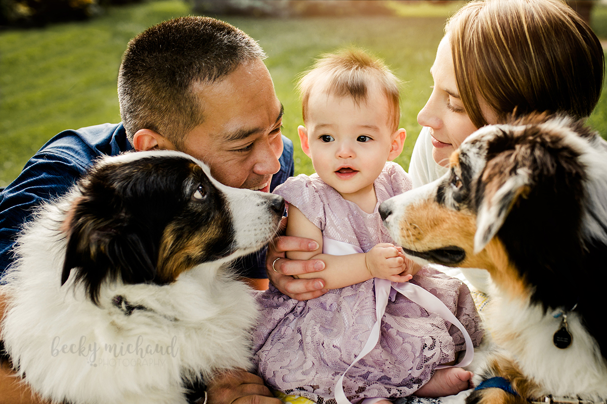 Mom, dad, and their two pups all snuggle around their baby girl during their Fort Collins family photo session