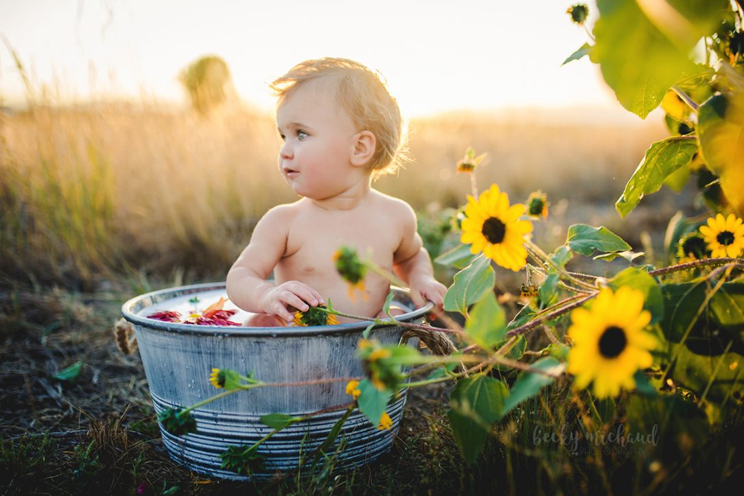A one year old girl enjoys a milk bath in a field of sunflowers in Colorado