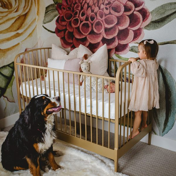 A girl and her dog stand guard over the new baby in the house as she sleeps in her crib